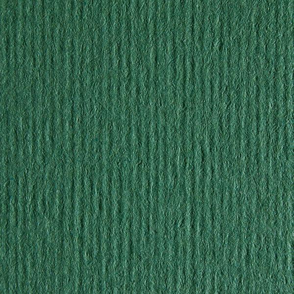 Nettuno-VerdeForesta