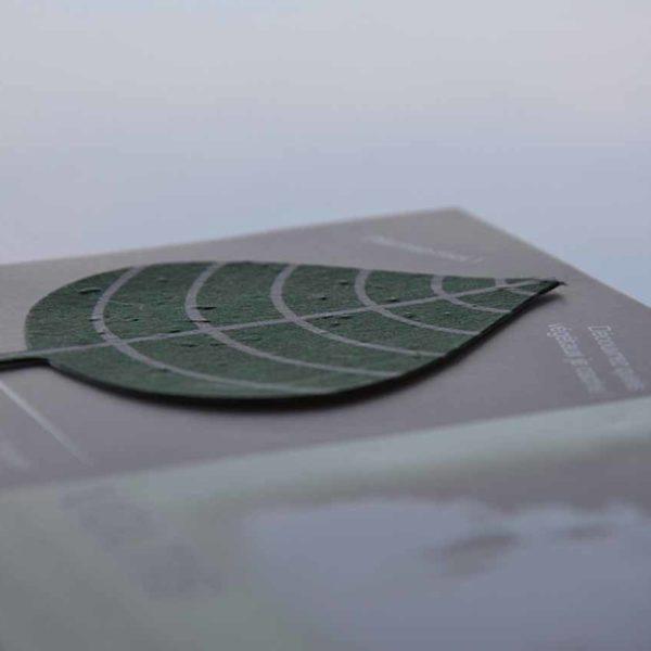 Piece-papier-ensemence-ecologique-biodegradable