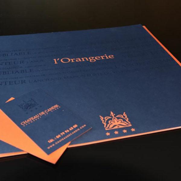 imprimerie-savoie-brochure-bulletin-fascicule-imprime-carte-de-visite-1-1