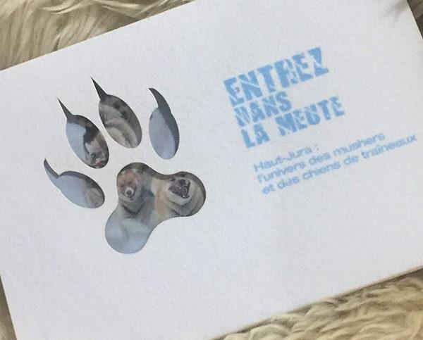 brochure découpe papier