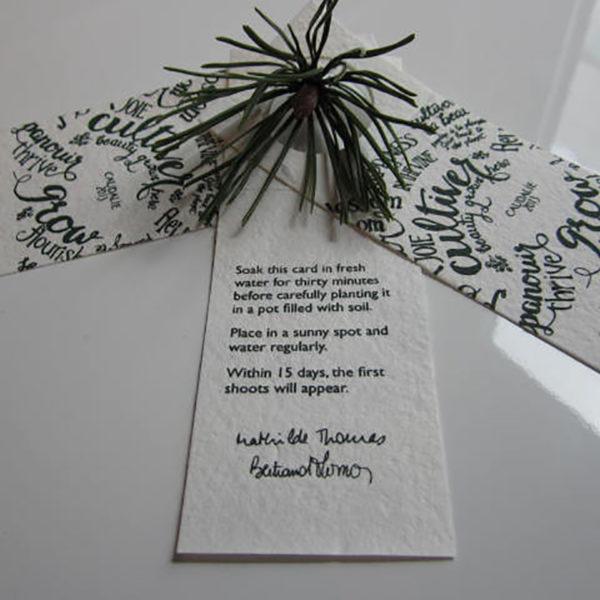 papier-ensemence-sur-mesure-naturel-ecolo